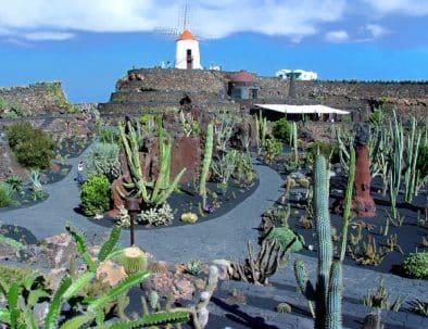 quoi faire îles canaries