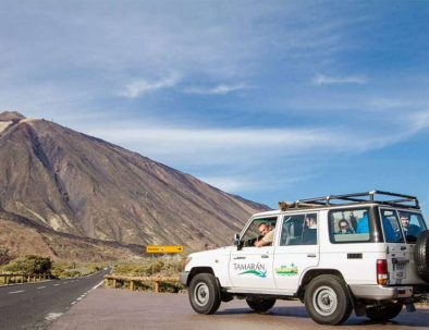 excursion en français tenerife
